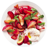 BEET PLUM AND RICOTTA SALAD